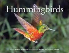 hummingbirds, ronald orenstein