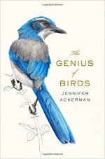 Jennifer Ackerman, The Genius of Birds