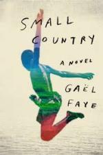Gael Faye, Small Country