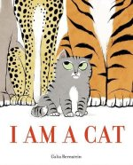 Galia Bernstein, I Am A Cat